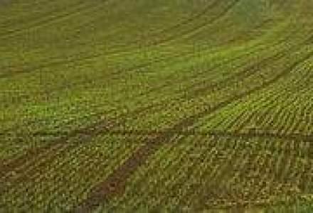 Italienii sunt interesati de afaceri cu legume, orez si biodisel, in Romania