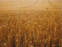 Cel mai greu an agricol din...