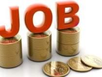 Ancheta asupra salariilor:...
