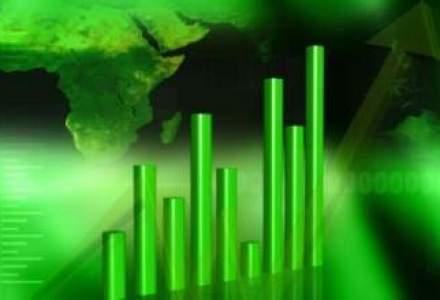 Teraplast estimeaza afaceri in crestere cu 17,6%
