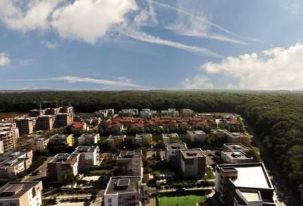 USR vrea sa convinga Primaria Capitalei sa renunte la drumul care taie in doua Padurea Baneasa