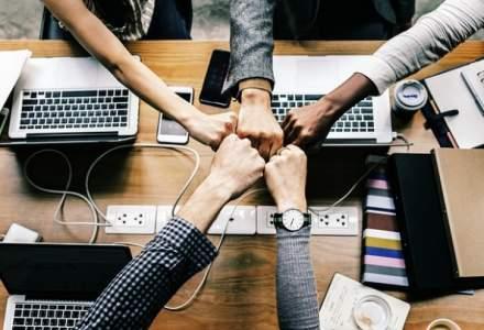 Cum construiesti o echipa care sa rezolve problemele repede si bine