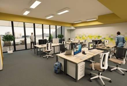 Ce este Silicon Forest, cel mai nou hub de tehnologie din Cluj
