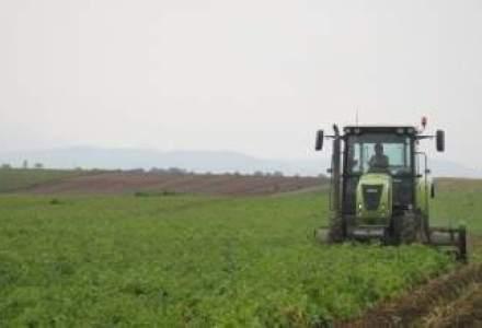Guvernul vrea comasarea terenurilor agricole si refacerea irigatiilor