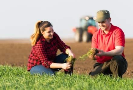 Agricover Holding, afaceri de 1,43 mld. lei in 2017, anul in care BERD a devenit actionar in companie. Cat a fost profitul net?