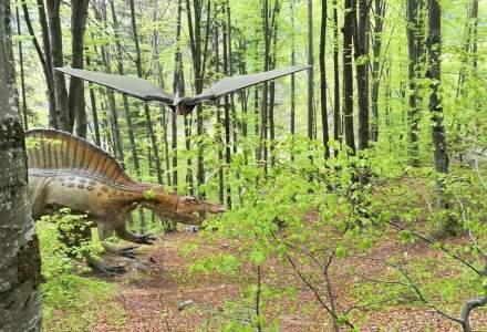 Dino Parc Rasnov, primul parc cu dinozauri din Romania, cifra de afaceri in crestere