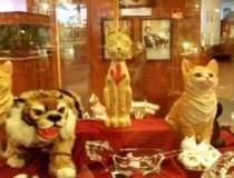 Cele mai neobisnuite muzee....