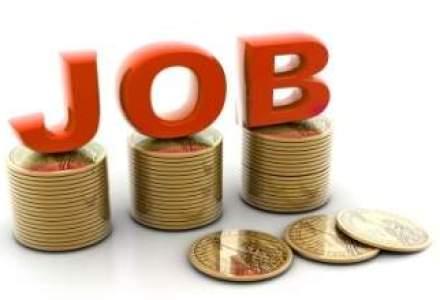 Topul job-urilor cu cea mai mare disponibilitate pentru tineri