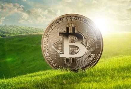 """Piata criptomonedelor """"s-a inverzit"""": 98 din primele 100 au inregistrat cresteri in ultimele 24 de ore. La cat a ajuns bitcoin"""