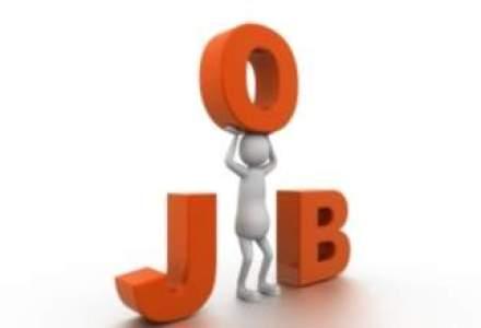 Una din patru companii angajeaza: In ce domenii sunt cele mai multe joburi