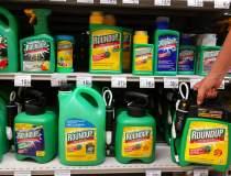Monsanto (Bayer) se confrunta...