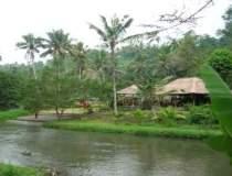 Vacanta in Bali, locul unde...