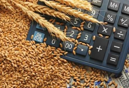 """Baciu, LAPAR: """"Declaratiile lui Petre Daea au prabusit pretul cerealelor"""""""