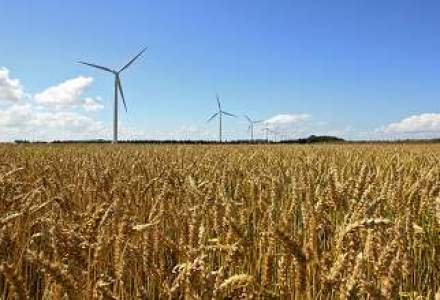 Productia agricola a urcat cu 9% in 2011