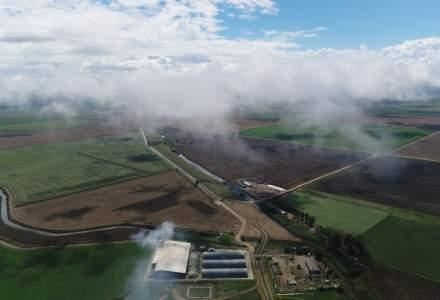 Al Dahra, compania care a concesionat Insula Mare a Brailei, anunta investitii de 500 mil. dolari in Romania