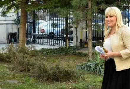 Guvernul Romaniei are la dispozitie doua luni pentru procedurile de extradare a Elenei Udrea si Alinei Bica