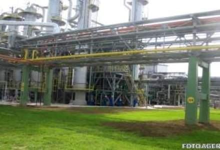 Guvernul schimba ordinea etapelor de privatizare a Oltchim