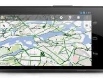 Google Maps implementeaza in...