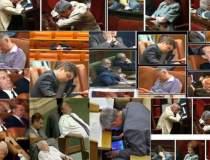 Cum fenteaza parlamentarii...