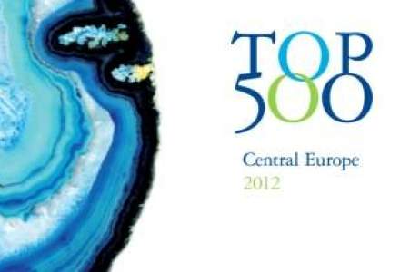 Campionii Romaniei in afaceri: ce companii si-au facut loc in TOP 500 din regiune