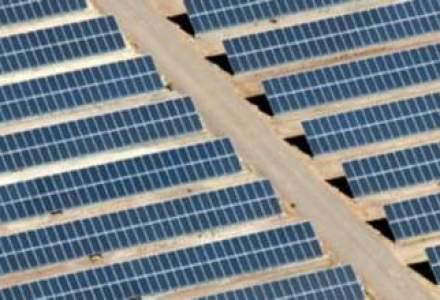 Chinezii de la ReneSola intra pe piata locala de energie