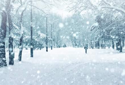 Cod galben de ninsori si viscol in zonele de munte din Suceava si Caras-Severin