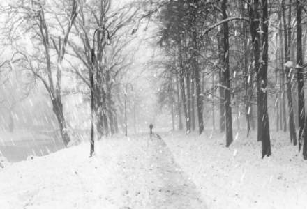 Ajunul Craciunului vine cu ninsori abundente. Cum va fi vremea marti, 25 decembrie