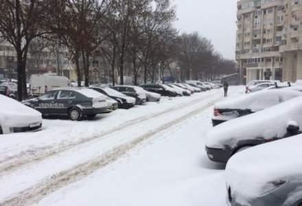 Prognoza meteo luni 14 ianuarie: Inceput de saptamana geros