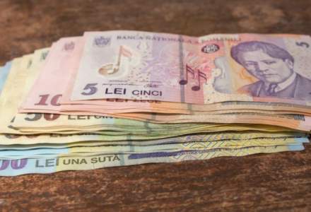 Curs valutar BNR astazi, 15 ianuarie: euro urca la un nou maxim istoric fata de leu