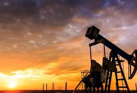 Petrom, lovita de OUG 114: Amana decizia de investitii in Marea Neagra