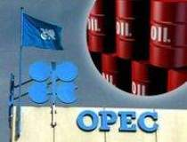 Pentru OPEC speculatorii...