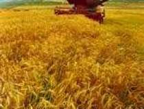 Agricultura a redus cu 26 de...