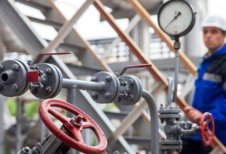 Ministerul Energiei vrea infiintarea unei noi companii in care sa fie incluse atat centralele pe carbune, cat si cele hidro