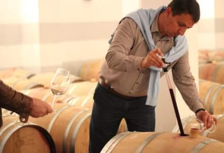 Turismul viticol din Romania atrage investitori straini