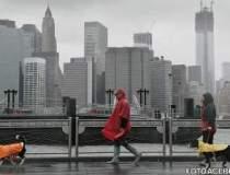 Uraganul Sandy pe piata...