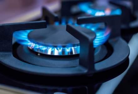 Pretul gazelor de productie interna, plafonat incepand cu 1 mai