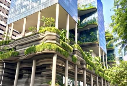 Cladirile de birouri ale viitorului trebuie sa fie verzi, nu avem alta optiune!