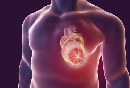 VIDEO Oamenii de stiinta din Israel au printat prima inima 3-D: are marimea unei inimi de iepure sau a unei cirese