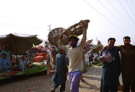 500.000 de pakistanezi se pregatesc sa vina in Romania. In ce domenii vor lucra