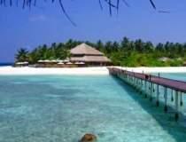 TOP: 7 insule pe care TREBUIE...