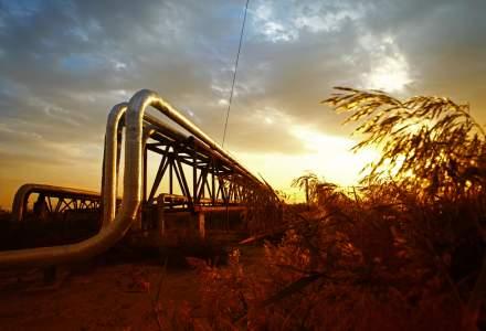 Actionarii Transgaz resping ambele propuneri pentru dividende