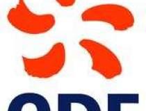 EDF vrea sa investeasca in...
