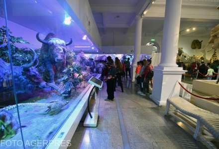 Noaptea Muzeelor 2019. Sute de muzee vor fi deschise in noaptea de 18 mai