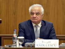 Radulescu, BNR: Firme-gigant...