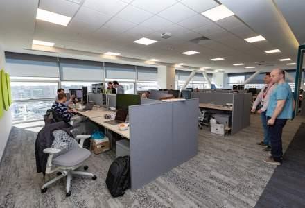 Joburi pentru IT-isti: Adobe Romania are 100 noi pozitii deschise pentru angajare anul acesta