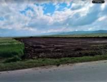 Autostrada Comarnic-Brasov:...
