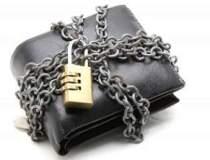 Investitiile in private...