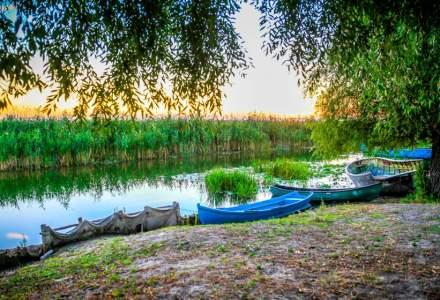 Delta Dunarii asteapta peste 60.000 de turisti adusi de navele de croaziera