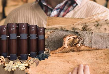 (P) Centrala termica pe lemne, o investitie potrivita in Romania