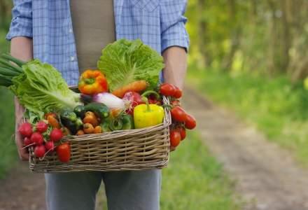 Vanzarile de produse bio in cadrul Carrefour, crestere de 300%. De ce investeste retailerul in programul Crestem Romania BIO